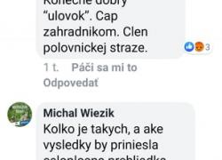 vyjadrenia_wiezik_1.jpg